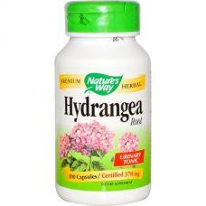 Корень гортензии, 370 мг, 100 капсул