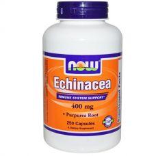 Корень эхинацеи пурпурной, 400 мг, 250 капсул